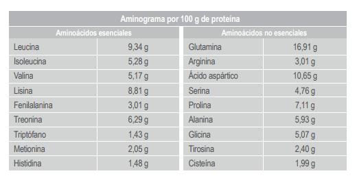 iso-pro-t-infisport-aminograma